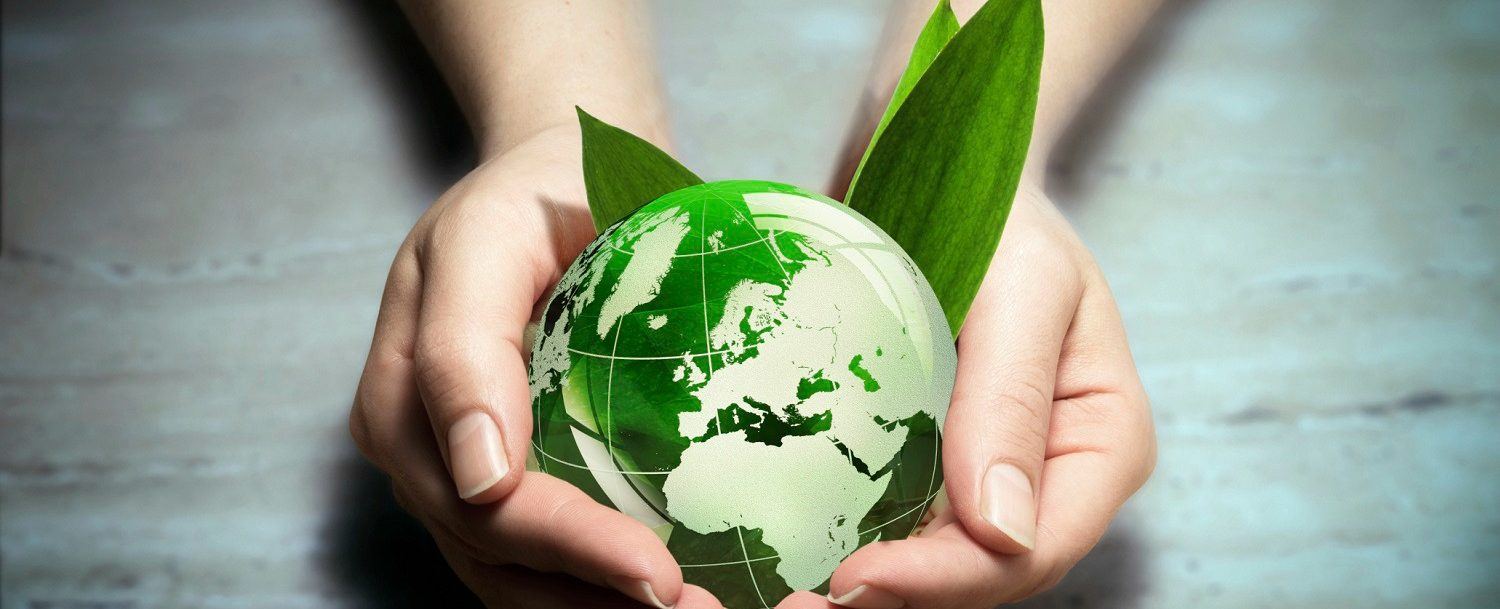 hands holding small Earth with leaves